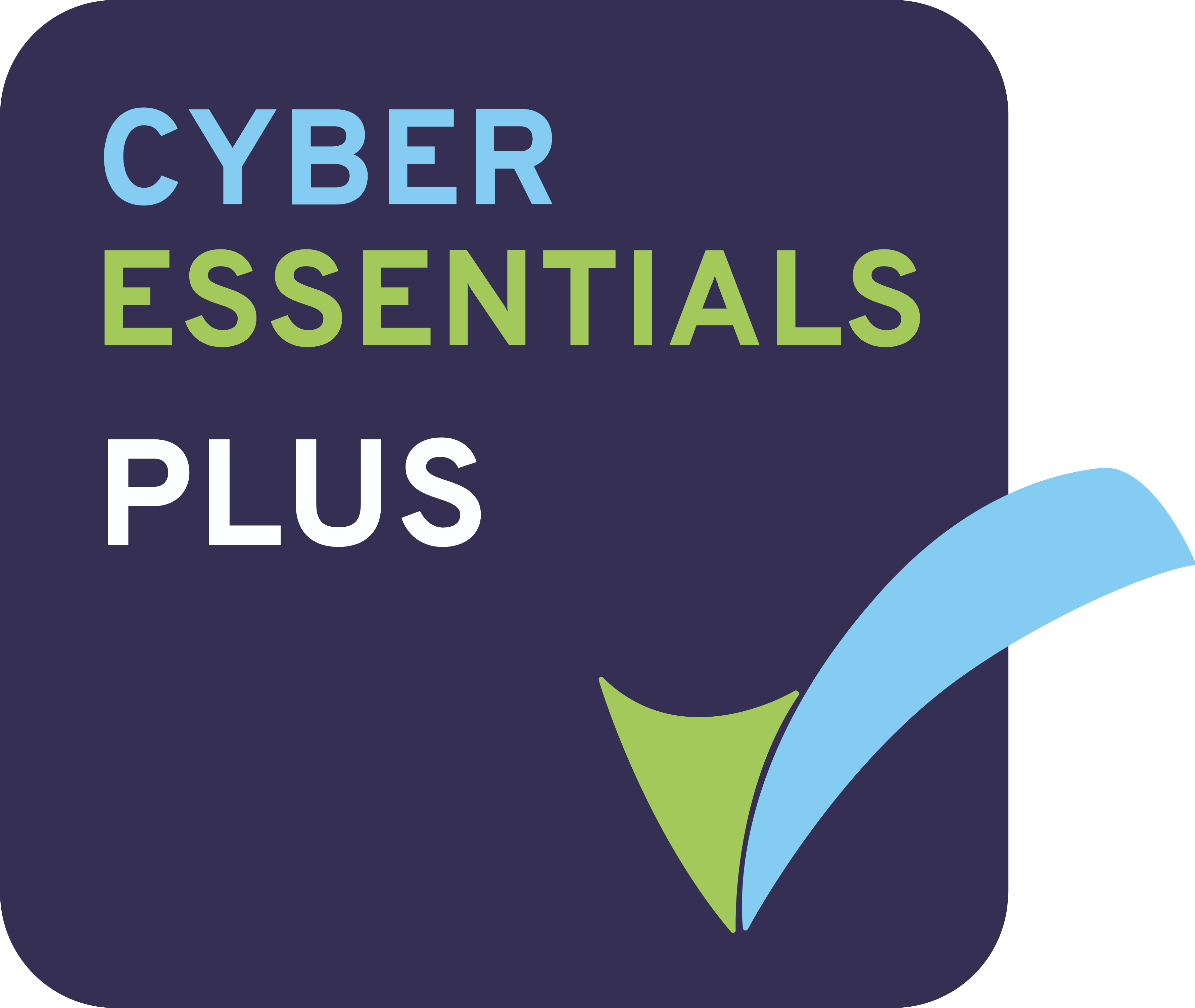 Cyber Essential Plus Technical Office